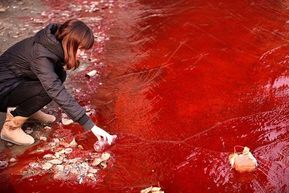 Ngày môi trường thế giới, xót xa nhìn mẹ thiên nhiên ngộp trong ô nhiễm - Ảnh 4.