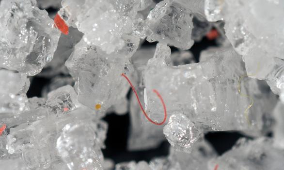 Ta nuốt vào bụng ít nhất 50.000 hạt vi nhựa mỗi năm - Ảnh 1.