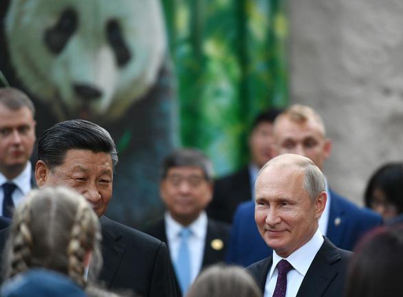Ông Putin mỉm cười trước món quà gấu trúc của Trung Quốc - Ảnh 1.