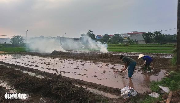 Ô nhiễm bụi mịn tăng cao ở Hà Nội do nhiều nơi đốt rơm rạ - Ảnh 4.