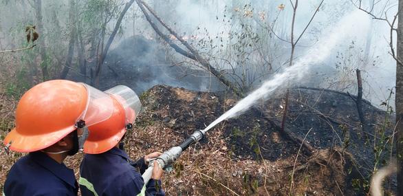 Rừng keo ở Quảng Nam bốc cháy dữ dội - Ảnh 3.