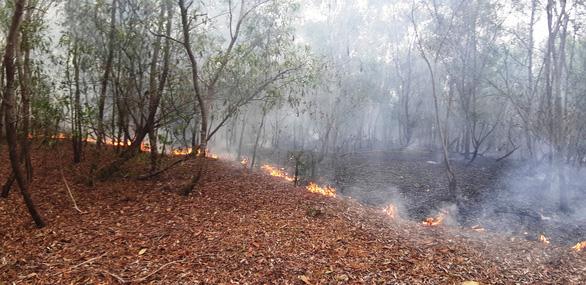 Rừng keo ở Quảng Nam bốc cháy dữ dội - Ảnh 7.