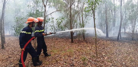 Rừng keo ở Quảng Nam bốc cháy dữ dội - Ảnh 6.