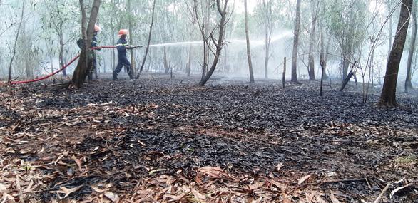 Rừng keo ở Quảng Nam bốc cháy dữ dội - Ảnh 8.