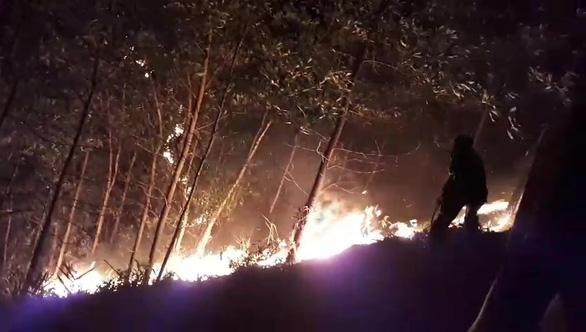 150 ha rừng keo cháy ngùn ngụt, quân dân Quảng Nam trắng đêm dập lửa - Ảnh 1.