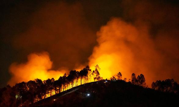 Dân đốt cành lá keo rụng, rừng lại cháy ngùn ngụt trong đêm Hà Tĩnh - Ảnh 1.