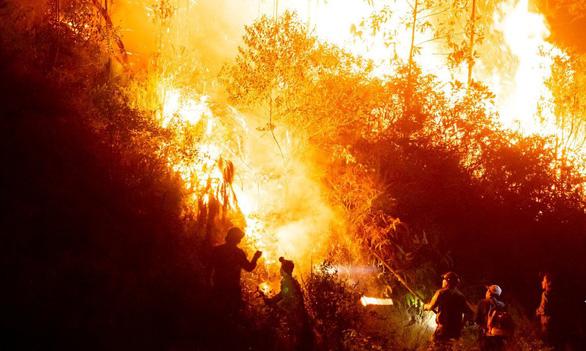 Dân đốt cành lá keo rụng, rừng lại cháy ngùn ngụt trong đêm Hà Tĩnh - Ảnh 2.