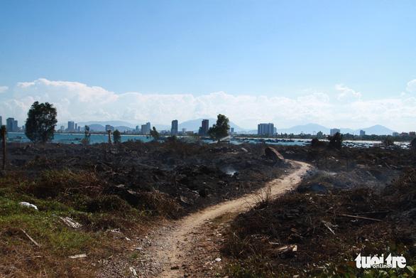 Cháy rừng thiêu rụi 10ha cây cối và 2 xe máy trên bán đảo Sơn Trà - Ảnh 2.