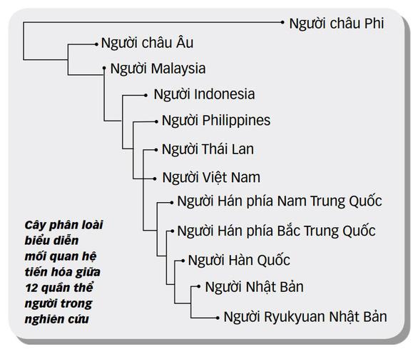 Công bố nghiên cứu bộ gen người Việt: Bất ngờ về nguồn gốc - Ảnh 2.