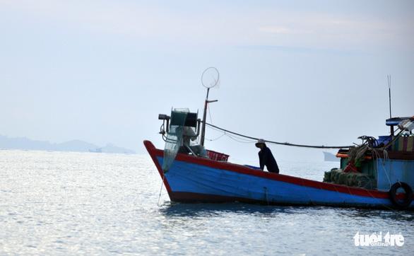 Ngăn kiểu bắt hải sản tận diệt: Ngư dân nghi ngờ lực lượng chức năng - Ảnh 1.