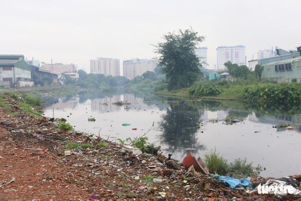 Cho dân trồng tạm cây dọc kênh Tham Lương để ngăn xả rác, tệ nạn - Ảnh 3.