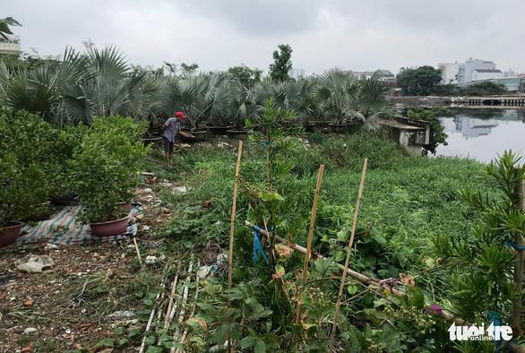 Cho dân trồng tạm cây dọc kênh Tham Lương để ngăn xả rác, tệ nạn - Ảnh 2.