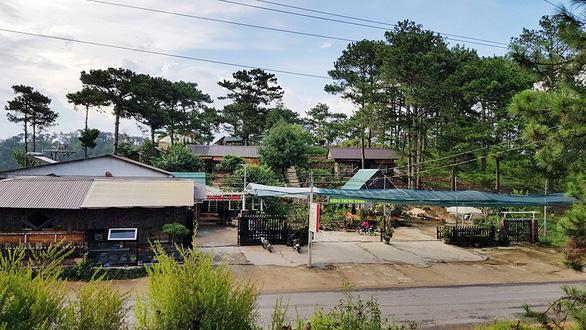 Làm nhà, dựng quán trong VQG Bidoup - Núi Bà - Ảnh 1.