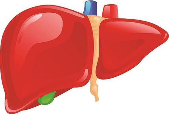 Vitatree Super Liver Detox trợ thủ đắc lực cải thiện chức năng gan - Ảnh 1.