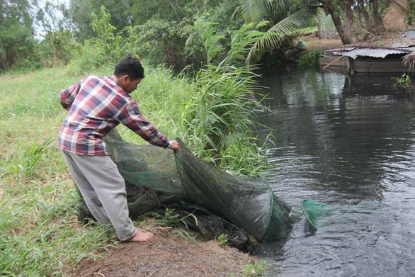 Bến Tre: Không chịu nổi ô nhiễm, người dân đào ống xả thải của trại vịt - Ảnh 5.