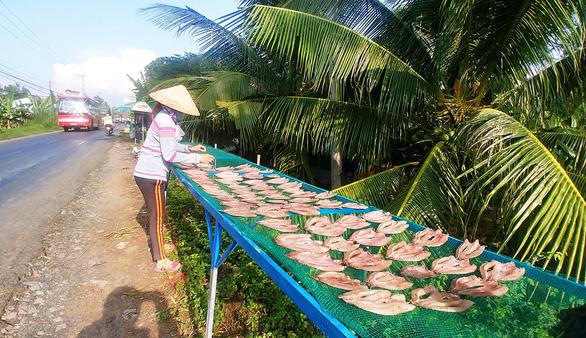 Cá lóc phơi khô trên đường về Hồng Ngự  - Ảnh 2.