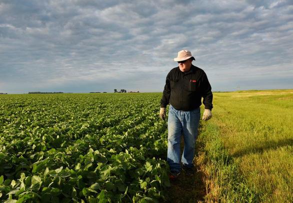 Ông Trump chi 16 tỉ đô lo cho nông dân Mỹ - Ảnh 1.