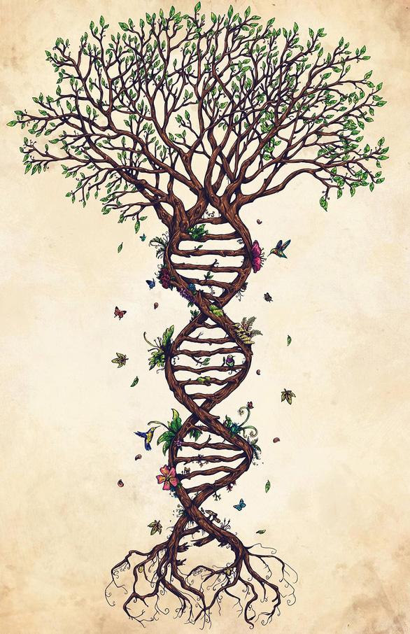 Giải mã gene: Khoa học hay thương mại hóa? - Ảnh 1.