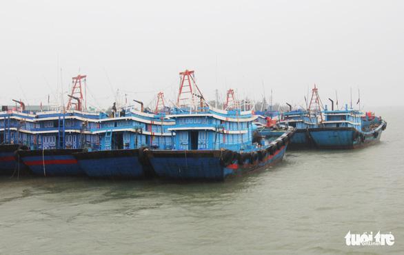 Ngư dân hối hả vào bờ tránh bão số 2 - Ảnh 5.