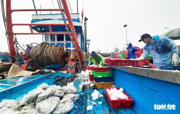 Ngư dân hối hả vào bờ tránh bão số 2 - Ảnh 2.