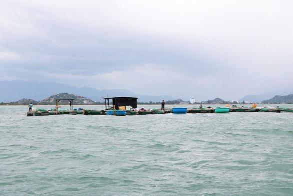 Cứu 6 ngư dân mắc kẹt giữa biển vì mải gia cố bè nuôi hải sản - Ảnh 1.