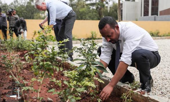 Trồng hơn 353 triệu cây trong 12 giờ để chống biến đổi khí hậu - Ảnh 1.