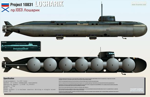 Tổng thống Putin xác nhận tàu ngầm bốc cháy là tàu ngầm hạt nhân - Ảnh 2.