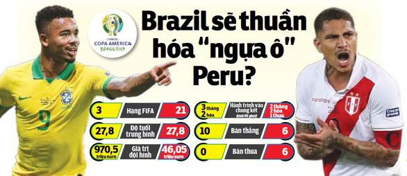 Brazil sẽ thuần hóa ngựa ô Peru? - Ảnh 1.