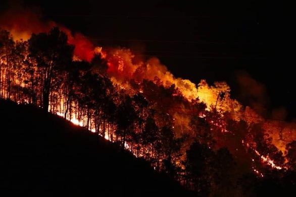 Rừng ở Hà Tĩnh lại cháy đỏ rực trong đêm - Ảnh 1.