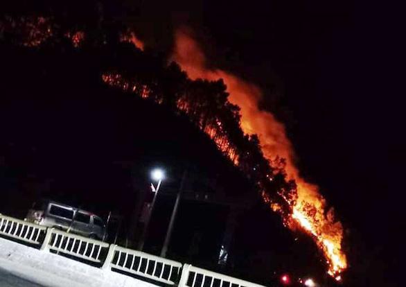 Rừng ở Hà Tĩnh lại cháy đỏ rực trong đêm - Ảnh 2.