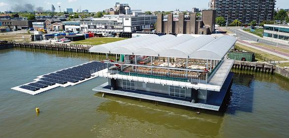 Nuôi bò trên biển ở Rotterdam - Ảnh 1.