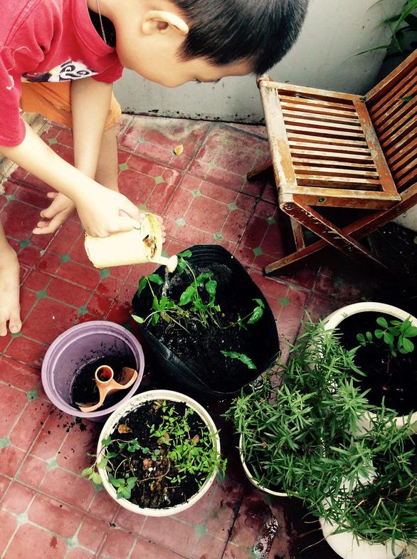 Cái vườn nhỏ xíu của mẹ ở bancông - Ảnh 1.