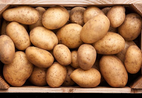 Cách khoa học tăng tuổi thọ cho rau quả tươi - Ảnh 5.