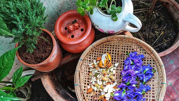 Cái vườn nhỏ xíu của mẹ ở bancông - Ảnh 3.