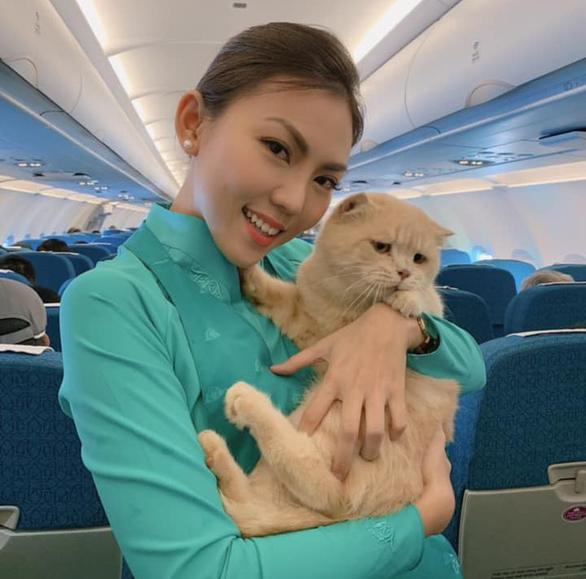 Chú mèo tên... Chó đi máy bay khoang hành khách làm dân mạng choáng váng - Ảnh 1.
