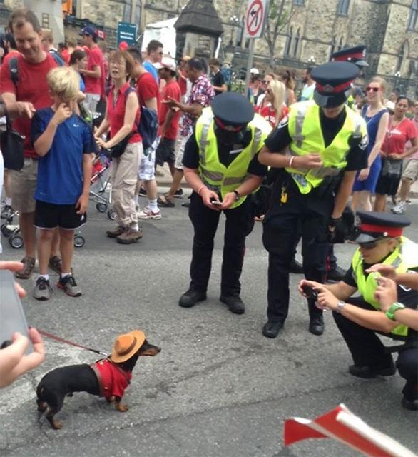 Cảnh sát Canada dễ thương và tử tế nhất quả đất - Ảnh 5.