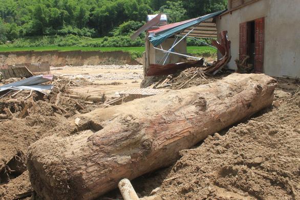 Lũ rút, vô số gỗ khủng ở lại bản Xa Ná - Ảnh 8.