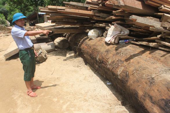 Lũ rút, vô số gỗ khủng ở lại bản Xa Ná - Ảnh 7.