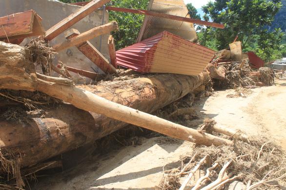 Lũ rút, vô số gỗ khủng ở lại bản Xa Ná - Ảnh 5.