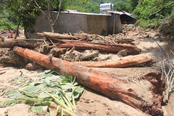 Lũ rút, vô số gỗ khủng ở lại bản Xa Ná - Ảnh 4.