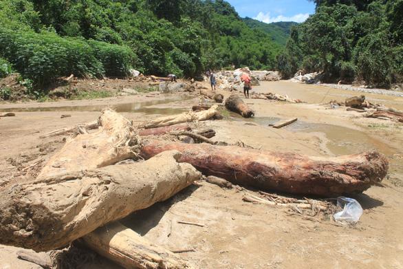 Lũ rút, vô số gỗ khủng ở lại bản Xa Ná - Ảnh 2.