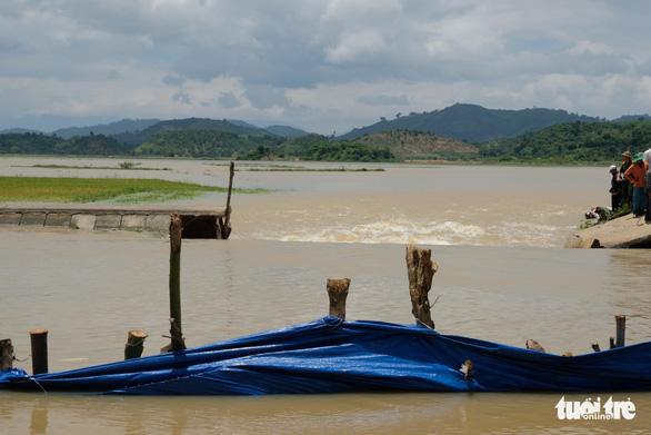 Hơn 500 người dầm mình trong nước vá đê cứu lúa vỡ òa niềm vui - Ảnh 7.
