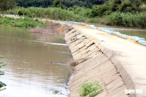 Hơn 500 người dầm mình trong nước vá đê cứu lúa vỡ òa niềm vui - Ảnh 6.