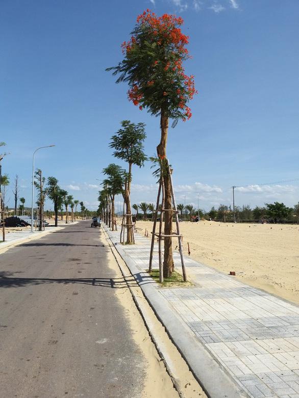 Đầu tư ở tỉnh, bất động sản ven biển là sản phẩm đỉnh - Ảnh 1.