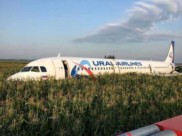 Va phải đàn chim trời, máy bay Nga buộc hạ cánh giữa đồng - Ảnh 1.