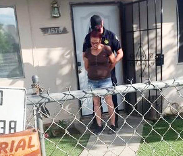 Bị phạt tù vì ném cún con vào đống rác - Ảnh 1.