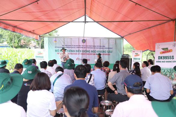 Chuyên gia tới Việt Nam tìm hiểu giải pháp phòng trừ sâu keo - Ảnh 2.