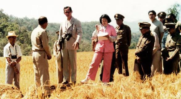 Nhìn lại hành trình thay trời làm mưa giúp nông dân của Nhà vua Thái - Ảnh 7.