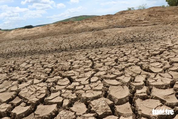 Nghịch lý ở Đắk Lắk: Hơn 1.000ha cây trồng chết khát trong khi nhiều khu vực ngập lụt - Ảnh 2.
