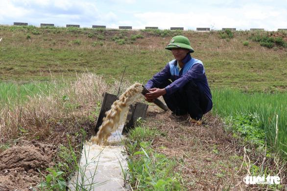 Nghịch lý ở Đắk Lắk: Hơn 1.000ha cây trồng chết khát trong khi nhiều khu vực ngập lụt - Ảnh 10.